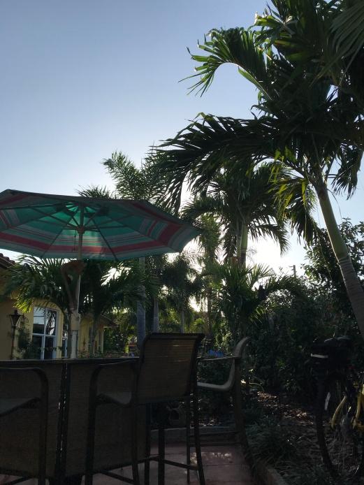 Peaceful mornings in Florida.